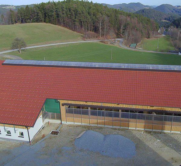 Rinderstall Gutau